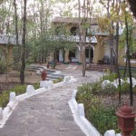 Krishna Jungle Resort 1